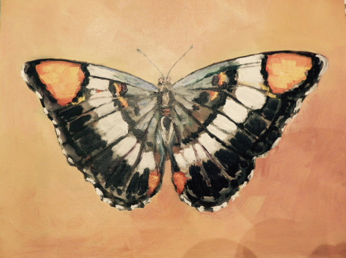 GBP-butterfly mural image